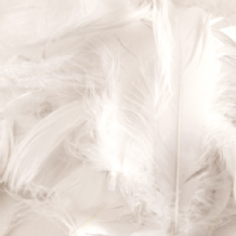 White Feathers for Balloons - Eleganza 8g Bag 1PK